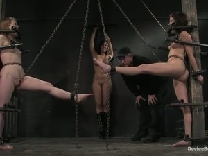free pictures of women pussy bondage