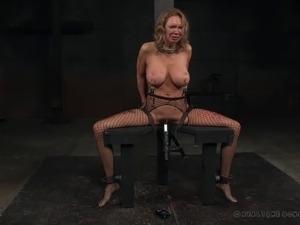 free videos bdsm porn