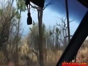 African slave blowing long white cock in car